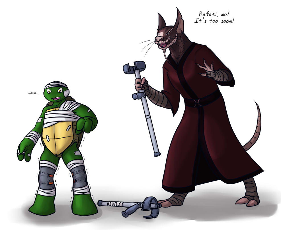TMNT: Raph's Accident by Culinary-Alchemist on DeviantArt