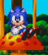 Sonic Capsule Chaos