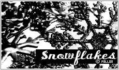 Snowflakes by v3rtex