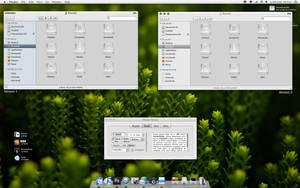 TRUTH 1.1 for Leopard by Mac-Ray