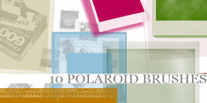 Polaroid Brushes