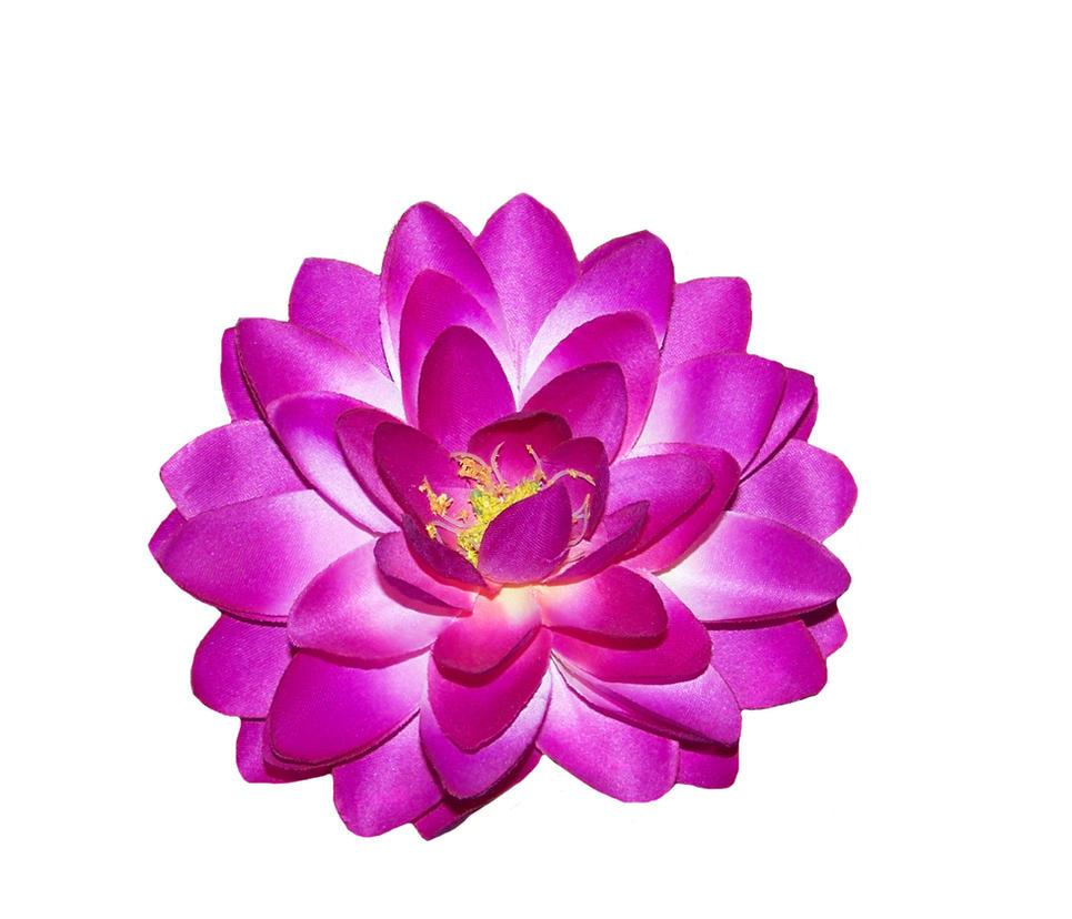 Purple Lotus Pdf By Mandykat On Deviantart