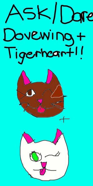 Ask/dare Dovewing/Tigerheart