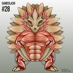 Sandslash PokeNatomy Gif by Christopher-Stoll