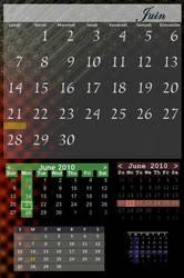 Chameleon Calendar by alex2539