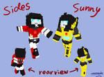 Sunstreaker and Sideswipe minecraft skin
