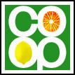 CO-OP Session 06 by visbot