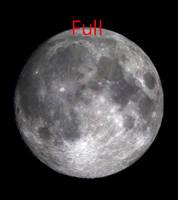 Dragun Moon Phase 1.2