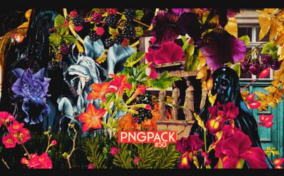 Pngpack #50