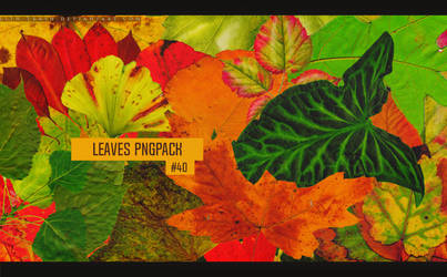 Leaves Pngpack #40  by LilithDemoness