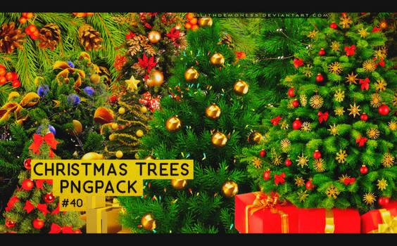 Christmas Trees Pngpack #40
