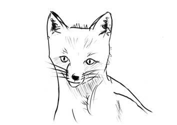Fox by nikolasalokin