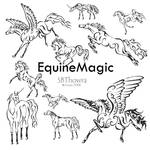 EquineMagic PS Brush Set