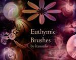 Euthymic Brushes