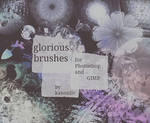 glorious brushes