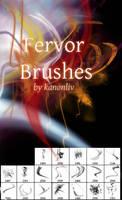 Fervor Brushes by kanonliv