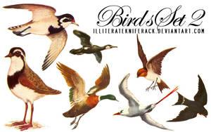 Birds Scans Set 02 by illiteratekniferack