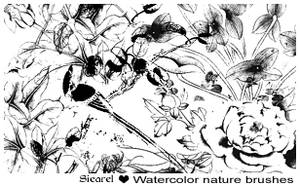 Watercolor nature by Siearel by Siearel