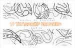 Brushes Pack 04: Teardrops