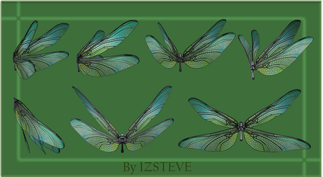Dragonfly Wings Set 01