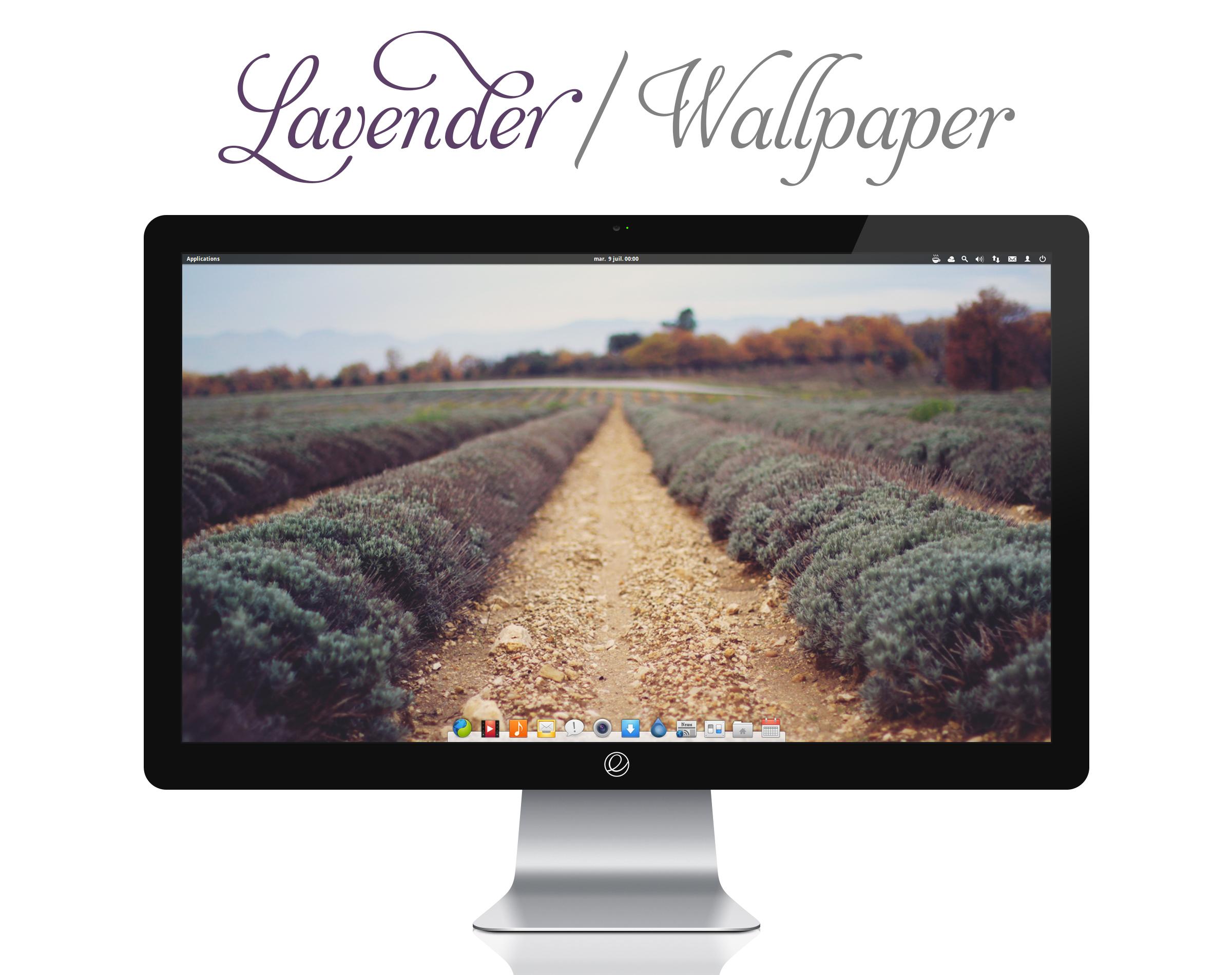 Lavender Wallpaper by bokehlicia