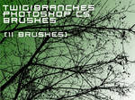 Branches brushes