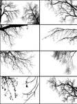 Tree Borders III