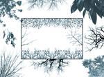 Tree Borders II