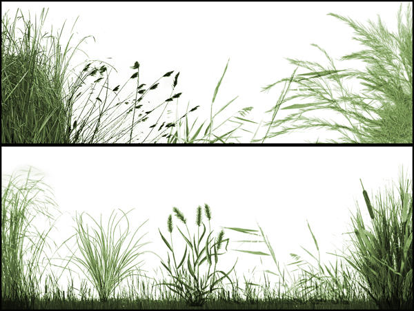 The Grasslands by midnightstouch