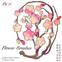Flower Brushes by Aka-Joe
