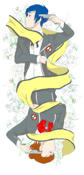Playing Card (Persona 3)