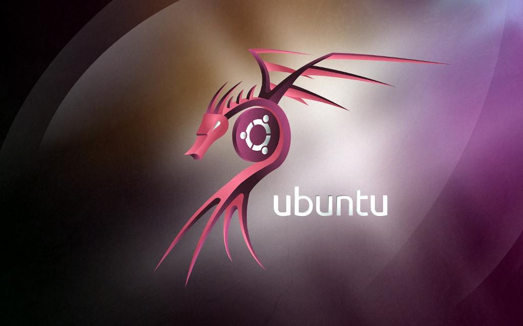 Ubuntu dragon wallpaper 2010 by petrsimcik