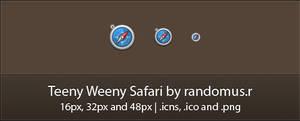 Teeny Weeny Safari