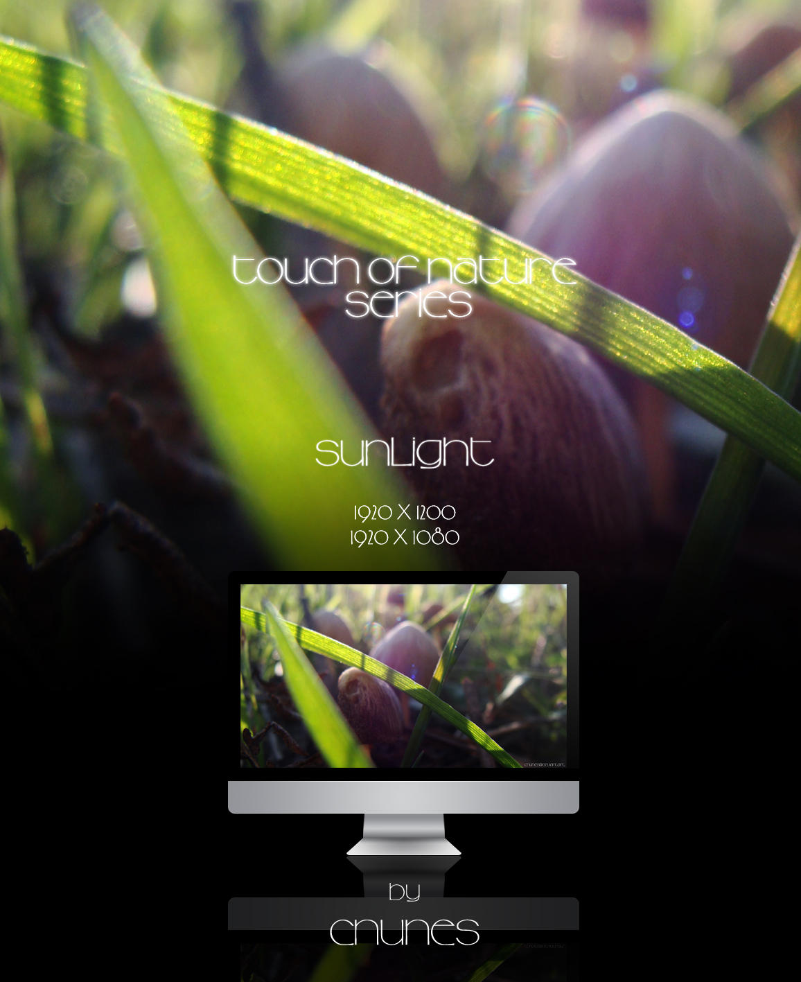 Touch of Nature Series - Sunlight by CNunes