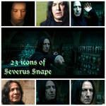 Severus Snape 23 Icons
