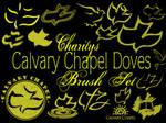 Calvary Chapel Doves and Logos