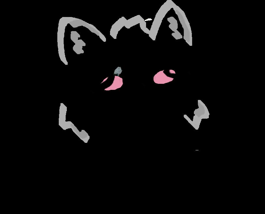 kitten rectal prolapse