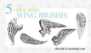 Large Wing Brushes