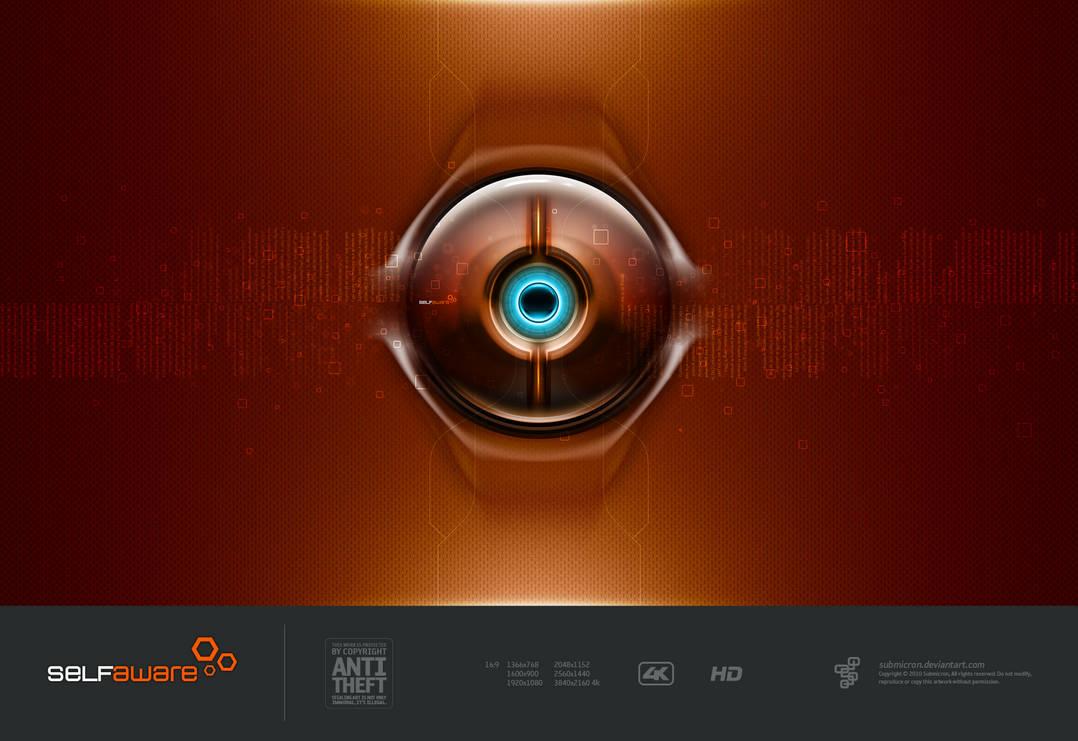 Self-Aware Simulated Orange