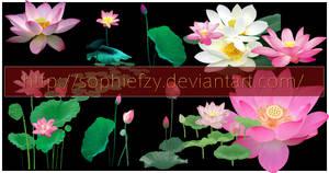 PNG lotus stock by Sophie-Y