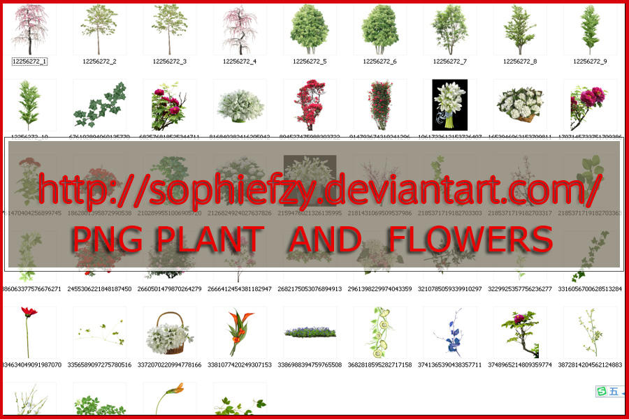 Flower Plant Png Png Plant And Flowers by