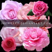 ROSE png by Sophie-Y