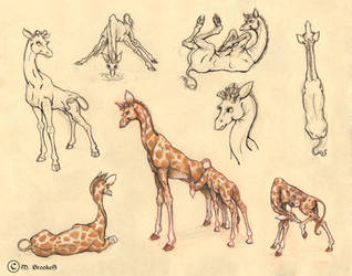 Giraffe Character Sheet by she1badelf