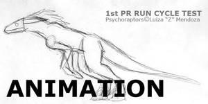 Psyrap Test Run -1st attempt-
