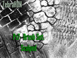Sculped Brush Set Ps7 by ZebraHDH