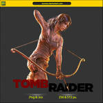 Tomb Raider - ICON