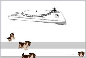 Turntablistic Kittens 2017 by pur9e