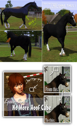 Sims 3: No Shiney Horses/No Hoof Cubes
