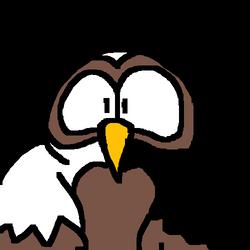 Owl Gif