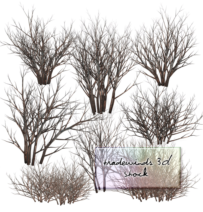 TW3D Dead bushes by TW3DSTOCK